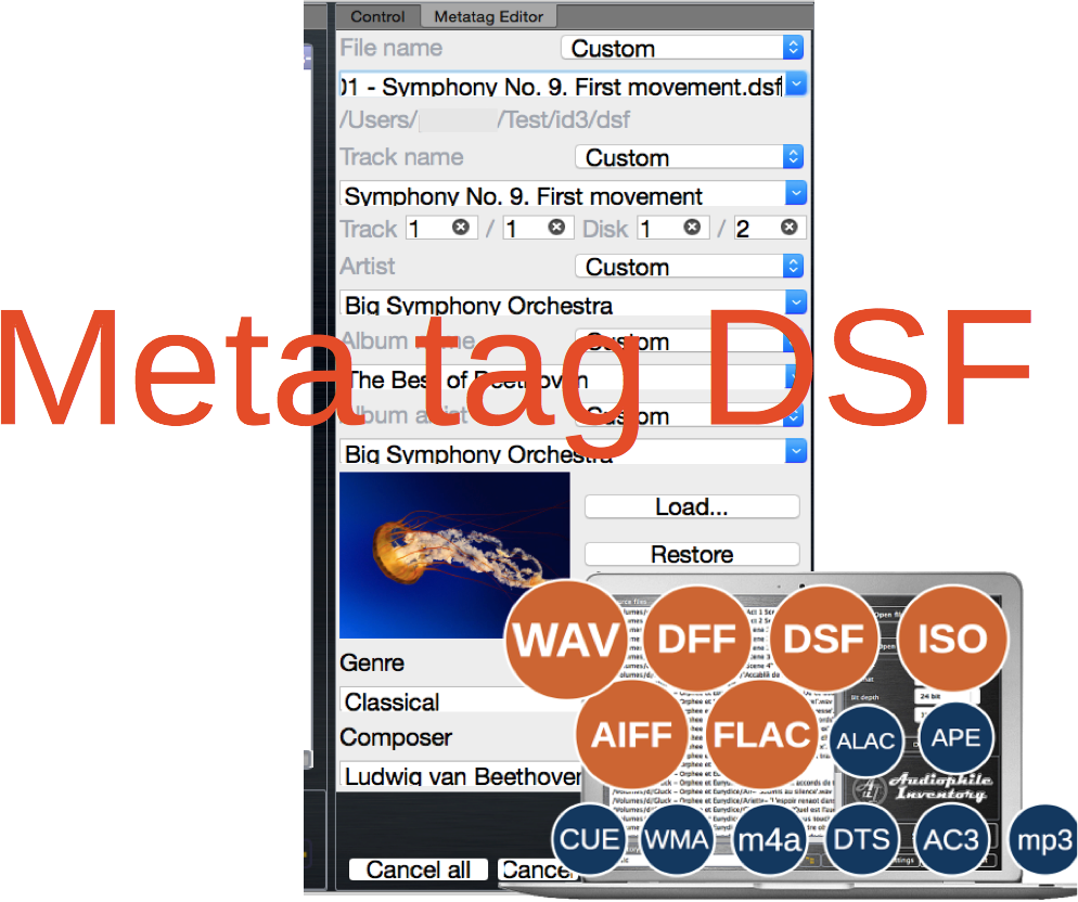 Meta tag editor DSF audio file